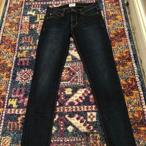 Hudson Skinny Jeans in a Dark Wash